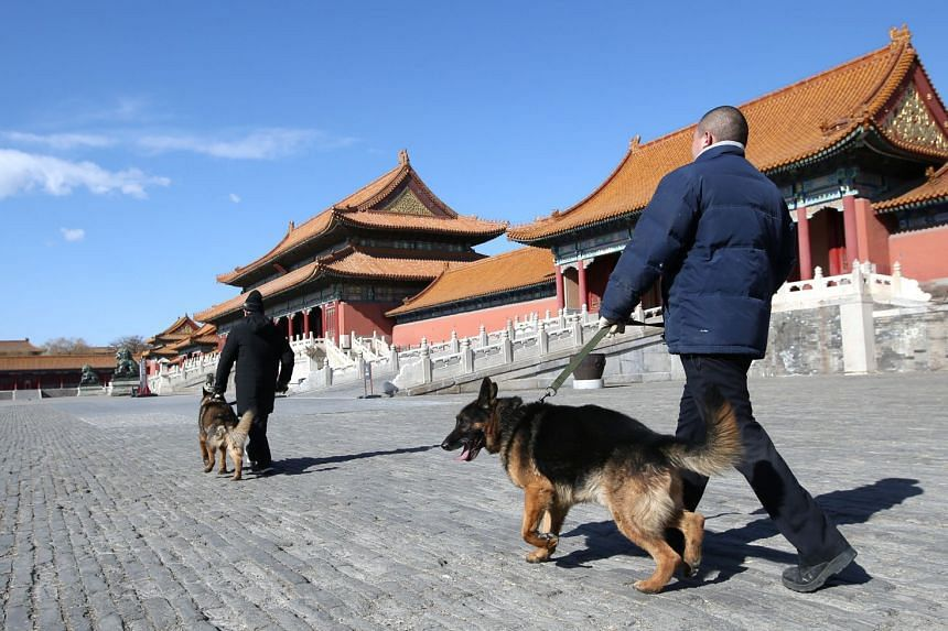 Security staff of the Forbidden City's canine patrol conducting their rounds in front of the Hall of Supreme Harmony in Beijing, on Feb 12, 2018.