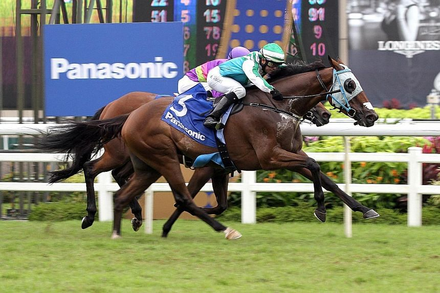 Infantry (No. 3) beat Countofmontecristo to win the Group 1 Panasonic Kranji Mile in Race 8 on Oct 1 last year.