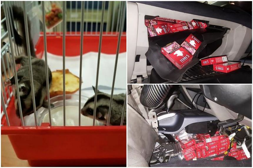 ICA officers confiscated two sugar gliders and a cargo of duty-unpaid cigarettes from a car at the Woodlands Checkpoint on Feb 14, 2018.