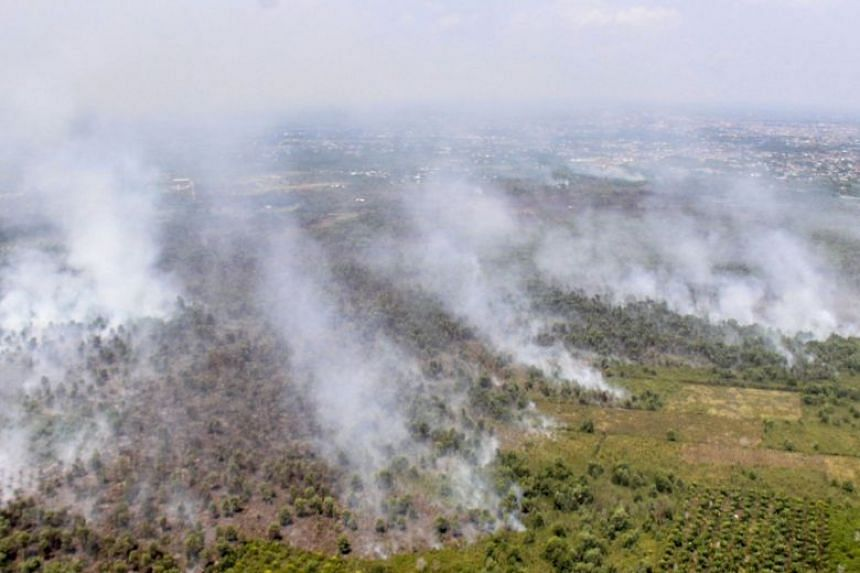 Four provinces - Riau (pictured), South Sumatra, West Kalimantan and Central Kalimantan - are on disaster alert because of a rising number of hot spots within their boundaries.