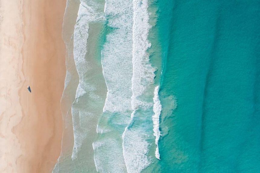 Drive along 75 mile beach on Fraser Island, Fraser Coast.