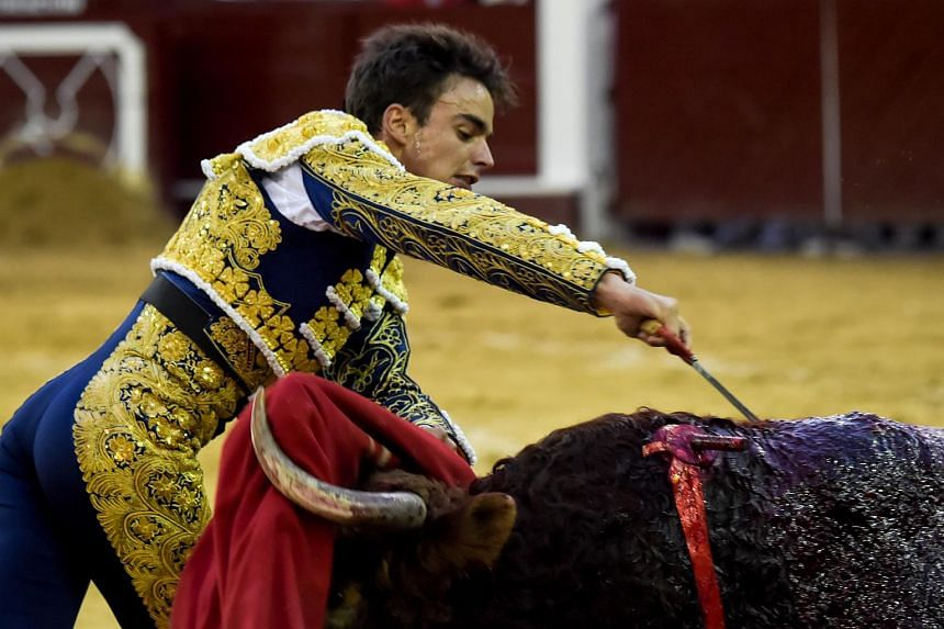Colombian bullfighter Luis Miguel Castrillon performs at La Santamaria bullring in Bogota, on Feb 4, 2018.