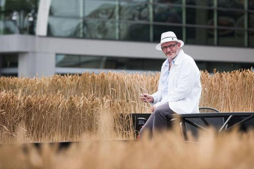 """Known as """"the wheat man"""" in France, artist Gad Weil (above) has set up his installation in Saumur and Taipei."""