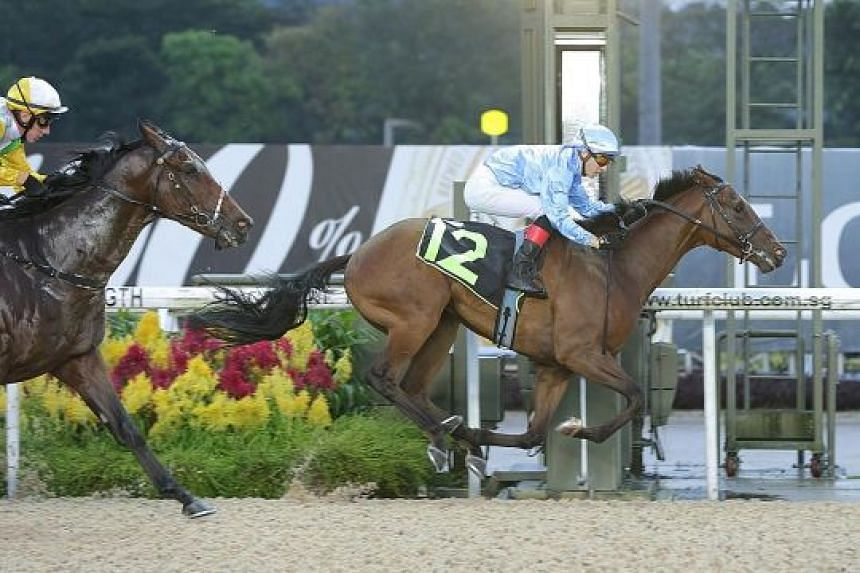 Newcomer Quarter Back winning first-up last night to give trainer Michael Clements his 500th winner at Kranji.