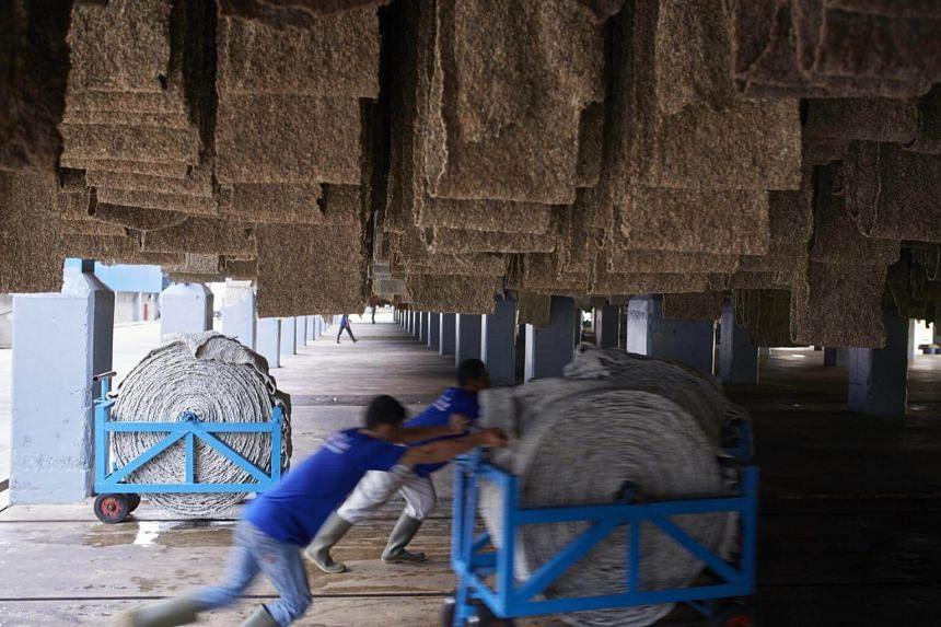 Men working at a Halcyon Agri faciliy in Palembang, Indonesia.