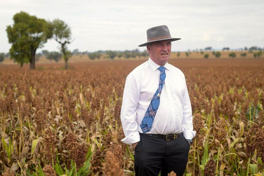 Following relentless pressure and a lack of support from Prime Minister Malcolm Turnbull, Barnaby Joyce (pictured) resigned last week from the Cabinet and as leader of the rural-based National Party.