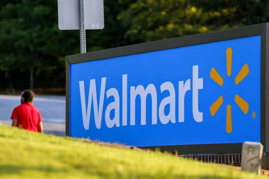 Walmart, the world's biggest brick-and-mortar retailer, reported a lower-than-expected profit and posted a sharp drop in online sales growth during the holiday period.