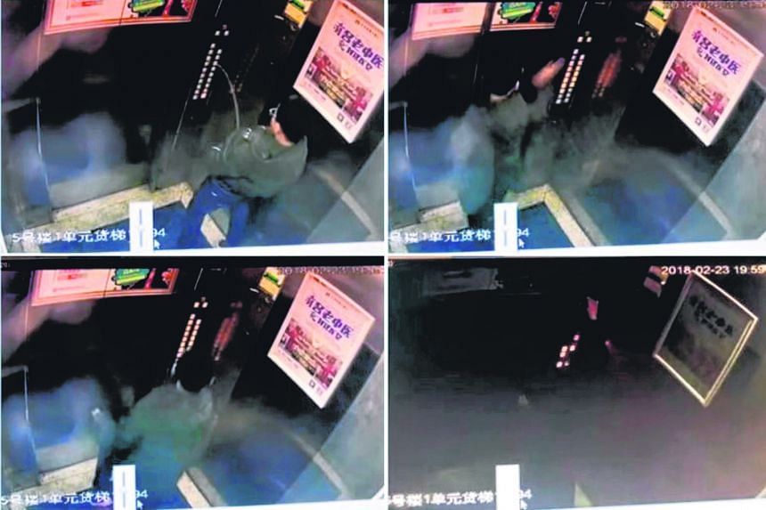 CCTV images showing the boy's mischief inside the lift and what it led to. Netizens say the boy's parents should pay for the lift's repair, while others say the boy deserved to be stuck inside.