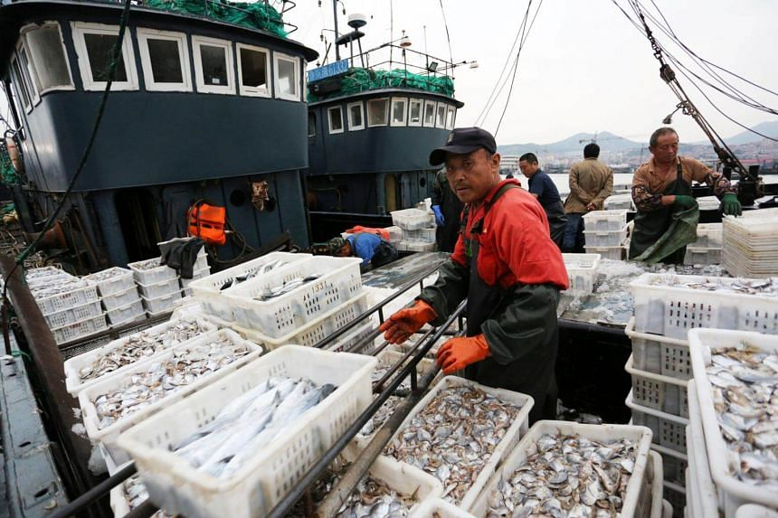 Fishermen unloading their haul at Lanshan fishing port in Rizhao, Shandong province, China, after fishing for four months.