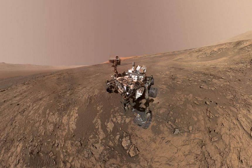 Since Mars had oceans and lakes billions of years ago, researchers say early life forms may have thrived there, too.