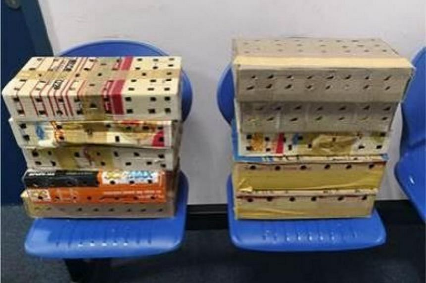 10 boxes containing the live birds.