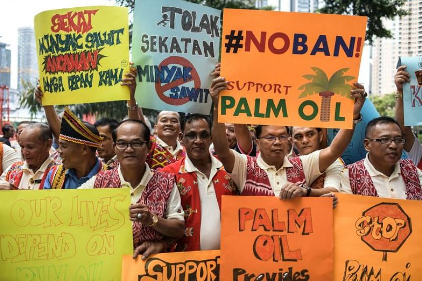 Protesters from Iban indigenous groups display placards during a protest against the European Union campaign to ban palm biofuels in Kuala Lumpur on Jan 16, 2017.