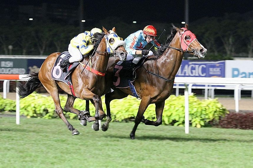 Front-runner O'What A Feeling (inside) staving off the $10 favourite Mr Dujardin by a head in the $45,000 Class 4 Non Premier event over 1,800m on the long course in Race 3 at Kranji last night.