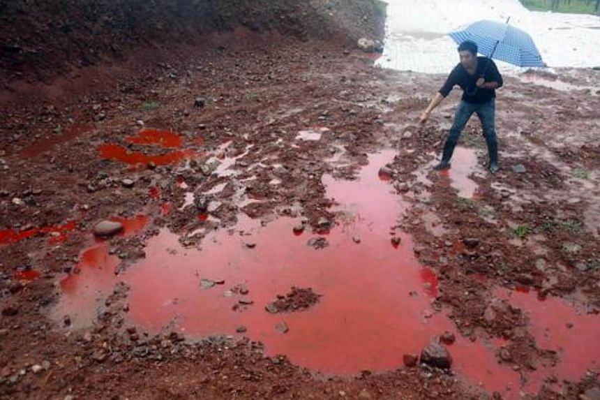 A man points to water and soil which turned red after being contaminated by industrial waste from a closed dye factory on Sept 15, 2014.