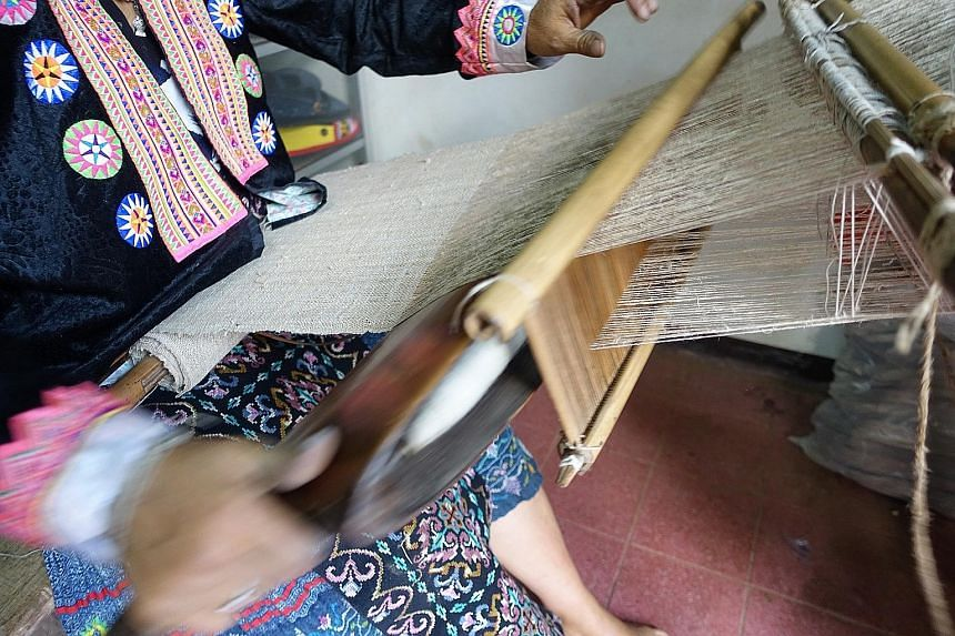 Handwoven hemp cloth (left) being dried after it has been dyed and a hemp plant (right) in a research facility in Chiang Mai. Marijuana being grown for medical purposes, such as treating epilepsy and managing pain. In the United States, where 29 of i