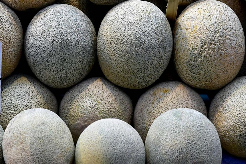 All contaminated rockmelons traced back to a farm in New South Wales were recalled on Feb 28.