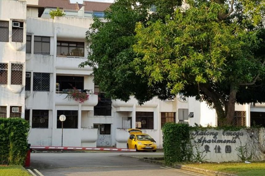 A three-storey block of 18 apartment units located in the famous Katong Heritage District