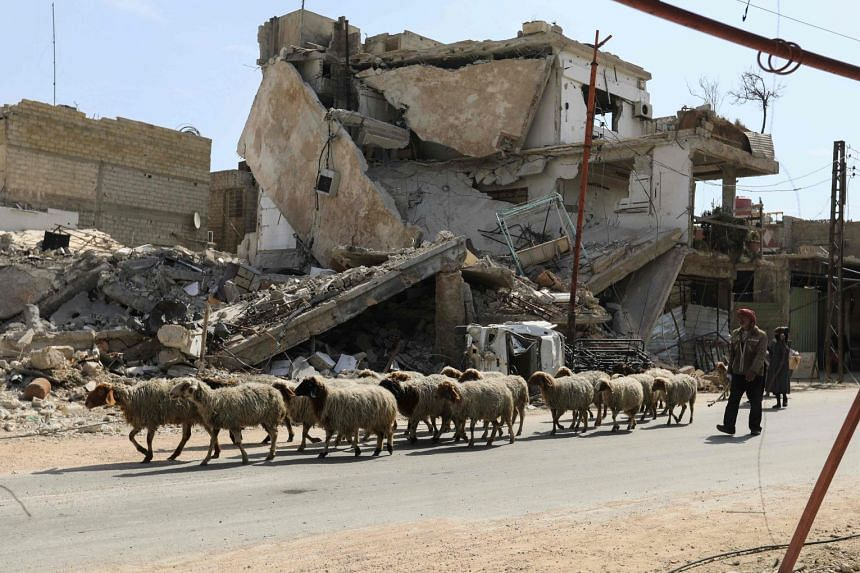 A shepherd leads his flock away from Douma to safer areas in the rebel-held enclave of Eastern Ghouta, on the outskirts of Damascus, on March 7, 2018.