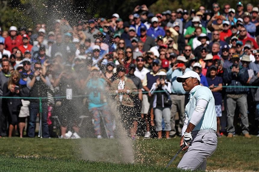 From the bunker at the fifth hole of the Innisbrook Resort north of Tampa, Florida, former world No. 1 Tiger Woods blasts out to five feet and sinks the birdie putt. It moved him to five under for the tournament and briefly into the lead at Valspar C