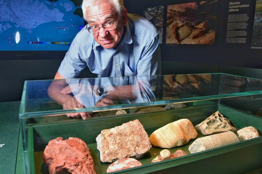 Dr Grahame Oliver with a rounded claw print (left), measuring about 2cm in length, found in red mudstone at Sentosa's Tanjong Rimau rocky outcrop, located under Fort Siloso.