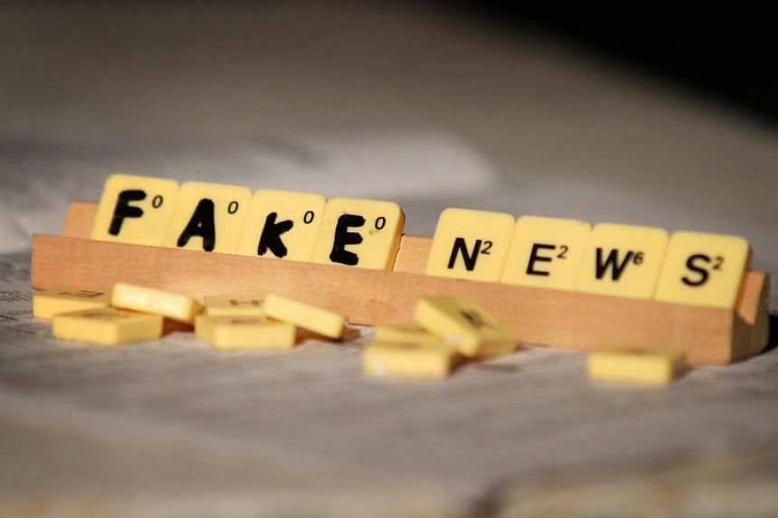 The Select Committee was set up last month to recommend how Singapore can tackle fake news, which can range from fake news for commercial purposes to sophisticated state-sponsored disinformation campaigns with political aims.
