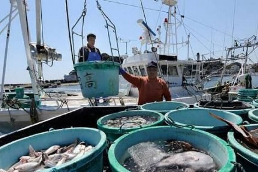 Consignments of fresh seafood including flounder, fluke and octopus have been exported from Fukushima to Thailand since late February.