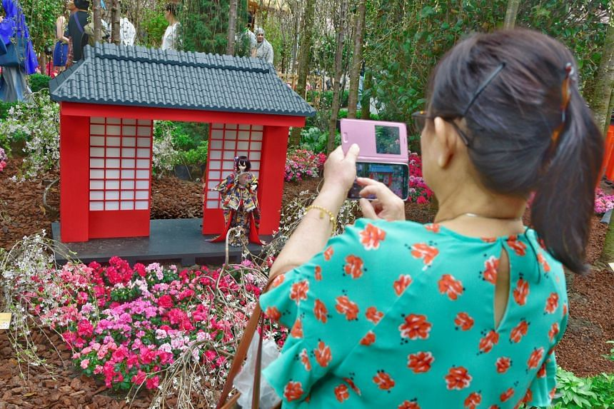 The 60cm-tall speciality dolls, worth thousands of dollars each, are part of a new effort to bring the sights, smells and even tastes of Japan to Gardens by the Bay's annual cherry blossom floral display.