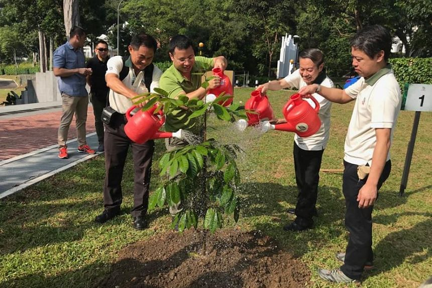 Minister for Social and Family Development and Second Minister for National Development Desmond Lee (third from right) planting a Nutmeg tree to mark the start of heritage landscape restoration works for the First Botanic Garden at Fort Canning Park.