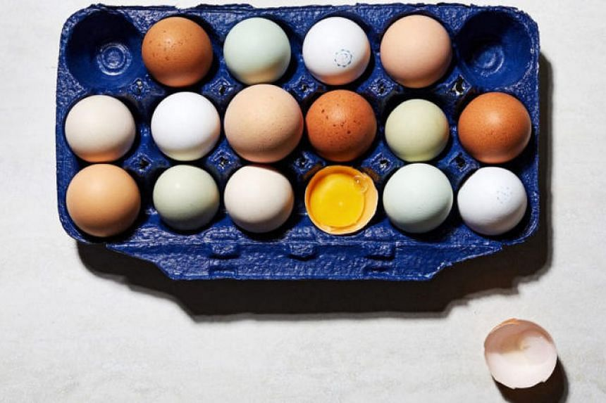 A guide to grocery store eggs.