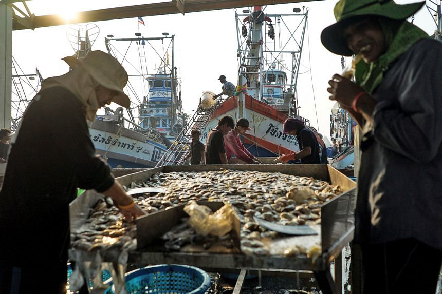 Migrant workers sorting seafood at a port in Thailand's Samut Sakhon province. Thailand is rushing to get an estimated 1.6 million illegal migrant labourers who work in its fisheries, as well as construction and agriculture sectors - the majority of
