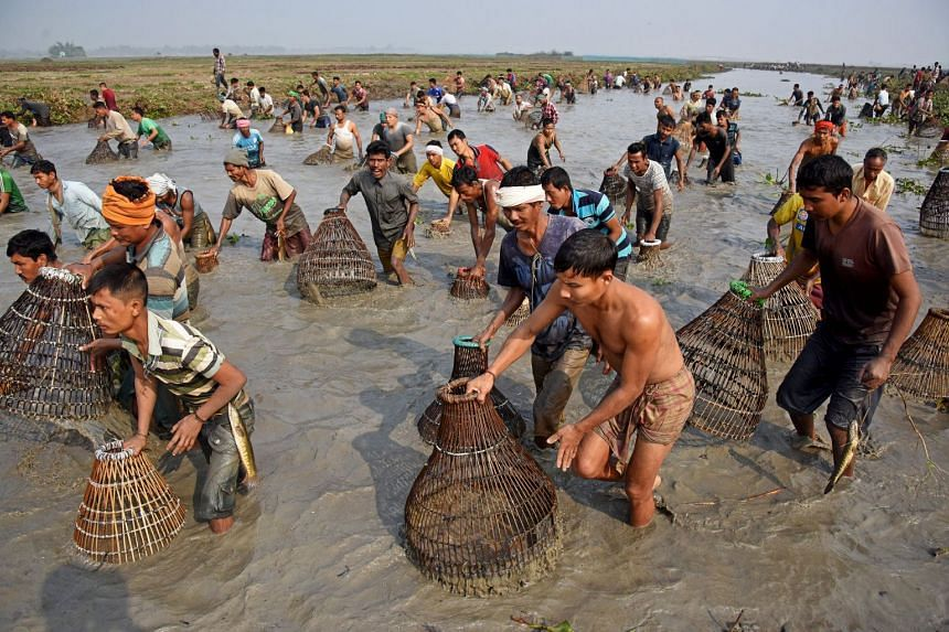People belonging to the Tiwa tribe at a community fishing event as part of celebrations for the harvest festival of Assam, in Morigaon district, in the north-eastern state of Assam, India, on Jan 16, 2018.