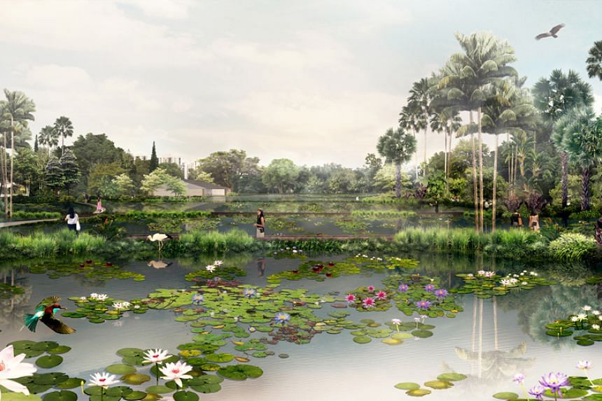 The aquatic gardens will showcase more than 140 varieties of water lilies, including more than 100 varieties that are new here, such as the Australian giant water lily.