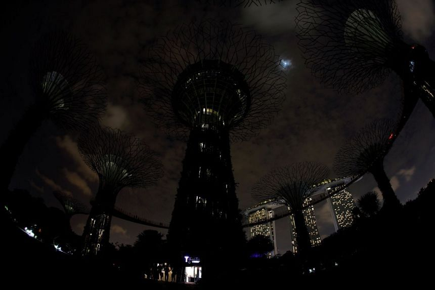 A view of the Supertrees at Gardens by the Bay after the lights were dimmed for Earth Hour on March 24, 2018.