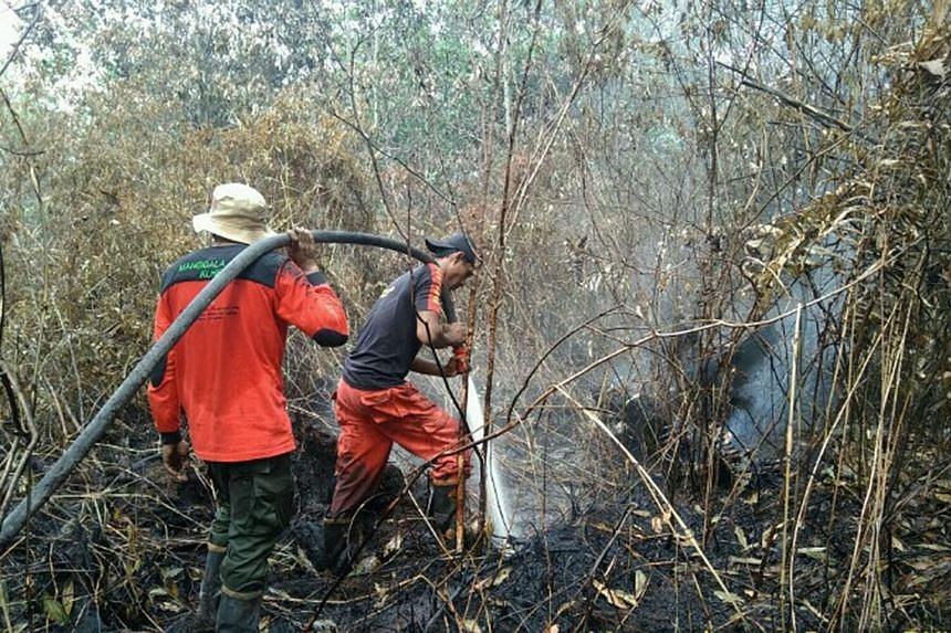 Officials fighting a peatland forest fire in Riau province on Feb 20. Indonesia has more than 15 million ha of peatland.