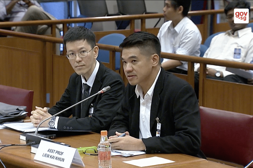 Assistant Professor Liew Kai Khiun (right) and Associate Professor Alton Chua from NTU's Wee Kim Wee School of Communication and Information speaking at the Select Committee on deliberate online falsehoods, on March 28, 2018.