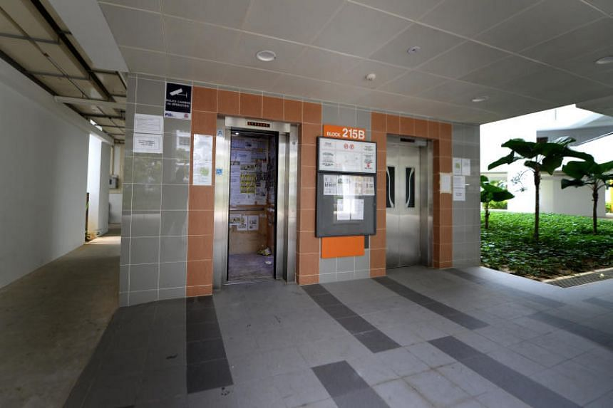 Each HDB estate typically has multiple brands of lifts installed and town councils can choose to either appoint original lift installers to carry out maintenance services, or appoint a third-party contractor.