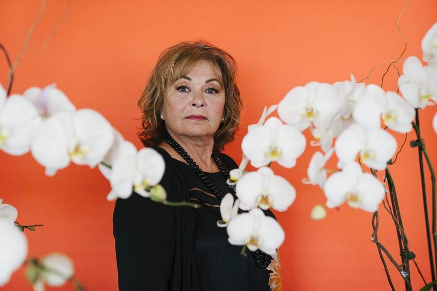 The show's Emmy-winning star, Roseanne Barr, made it clear that she was a supporter of President Donald Trump and let it be known that her programme would grapple with a hot political moment.