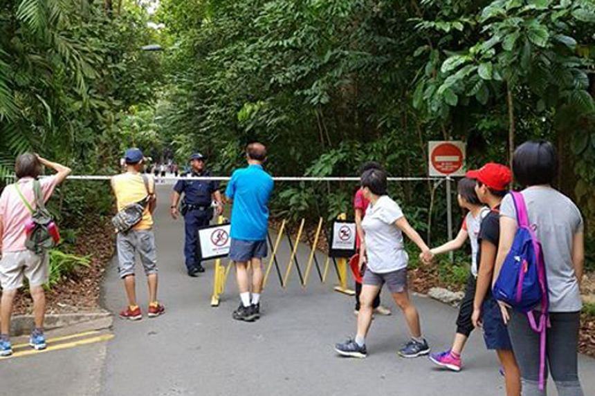 A Reddit user said that the hiking trails had to be shut and park visitors were evacuated from the area following the discovery.