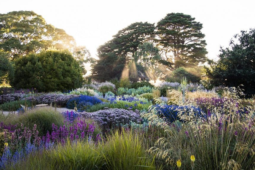 The Mount Macedon garden in Victoria, Australia, is a garden featured in the book, Dreamscapes: Inspiration And Beauty In Gardens Near And Far.