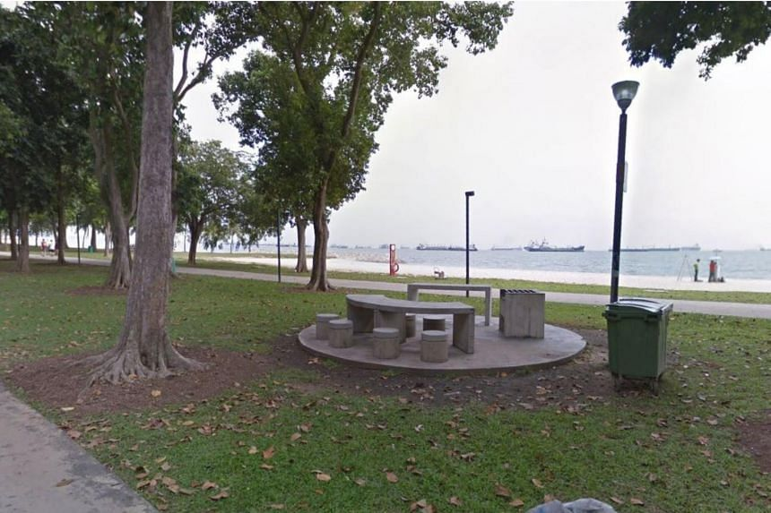 On April 3, the police received a report that a 27-year-old woman had been molested by a man at East Coast Park. A 38-year-old man also reported that his mobile phone and money were stolen at the park.