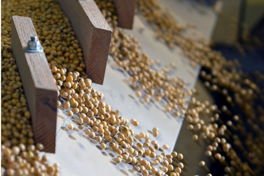 Soya beans are among the 106 US goods on which China will be imposing an additional 25 per cent tariff.