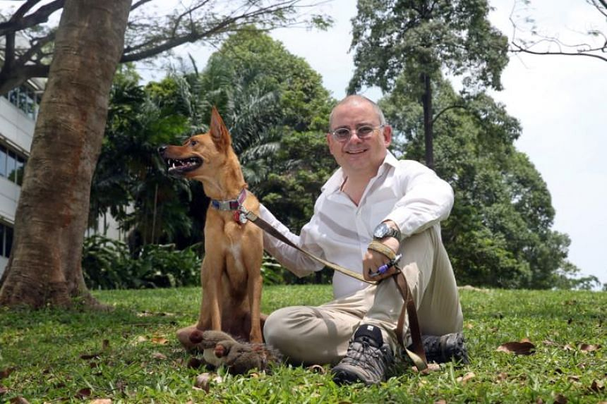 Mr Joe Havely with his dog Scooby. With Uber's exit from Singapore, a group of pet owners are now left without an on-demand pet taxi service. More than 1,000 people have started a petition to ask Grab to retain the UberPet service.