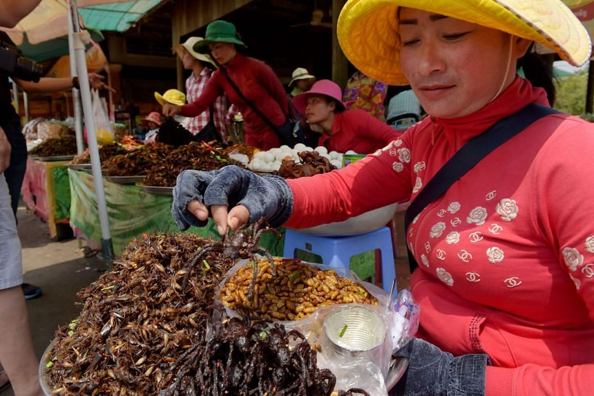"""A Cambodian vendor holding a fried tarantula at Skun town in Kampong Cham province. Vendors of the traditional snack, known as """"aping"""", said the spiders are becoming scarce as rapid development wipes out jungle habitats."""