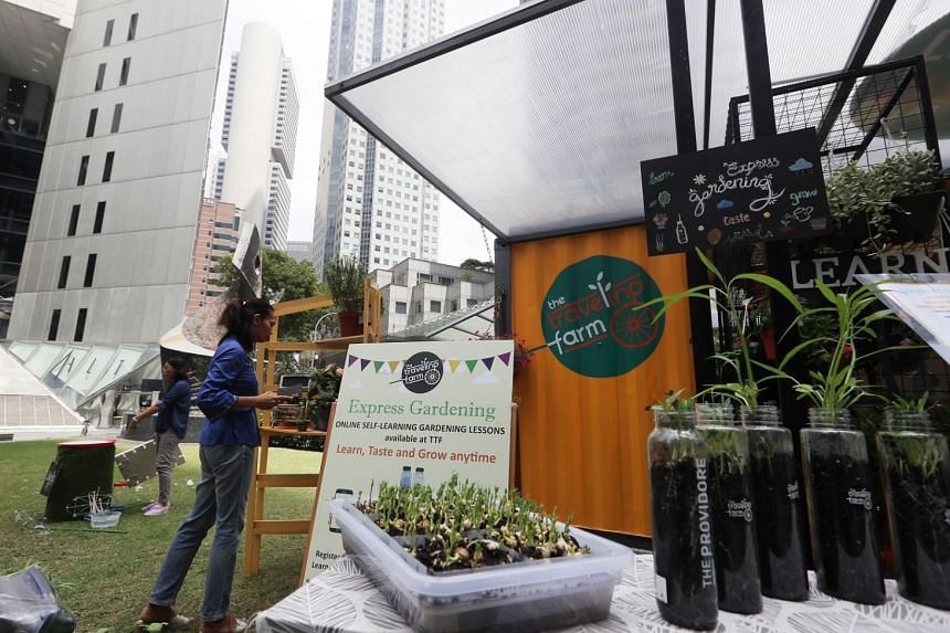 The Travelling Farm, housed in a bright yellow, 20-foot, retrofitted cargo container, is a shop for plants and gardening equipment that also provides craft activities.