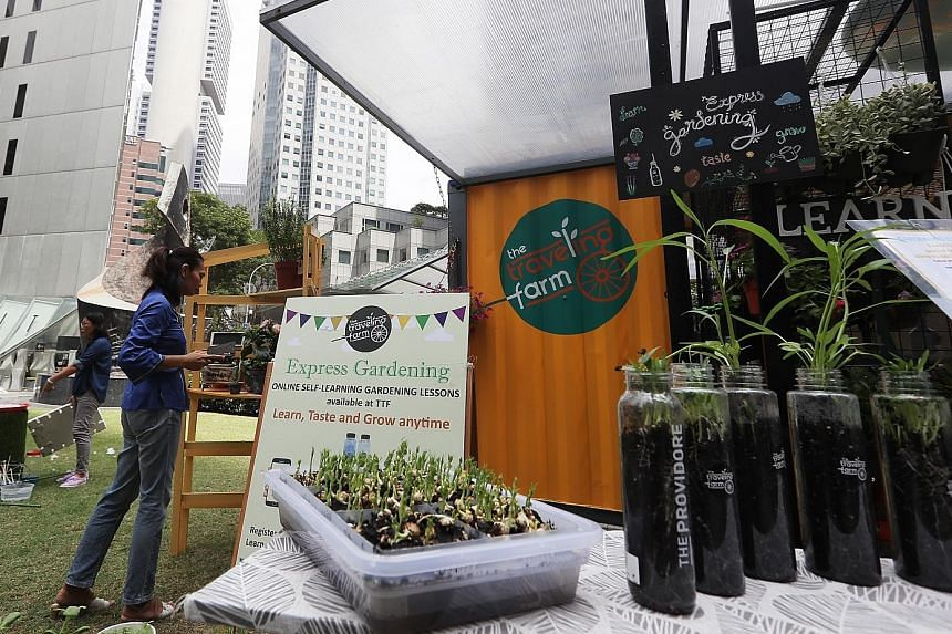The Travelling Farm at Raffles Place Park is housed in a bright yellow, retrofitted cargo container and adopts its stocks to its locale.