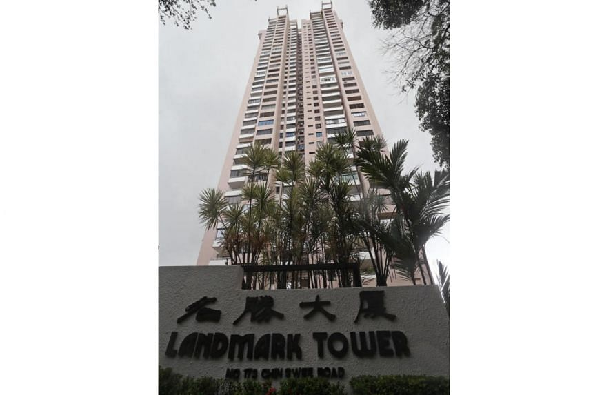 Landmark Tower, which comprises 139 units in a single 38-storey apartment block, was put up for public tender with a reserve price of S$285 million.