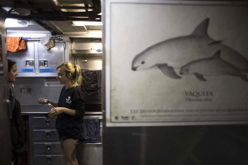 Crew members on board the Sea Shepherd ship Farley Mowat speaking in the kitchen of the ship as it makes its way through the Gulf of California, on March 8, 2018. The ship is part of an operation to save the critically endangered vaquita porpoise.