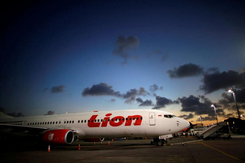 Budget carrier Lion Air plans to make North Sumatra's Silangit airport an air hub for passengers from South Asia travelling to other Indonesian cities as well as Singapore and Malaysia.