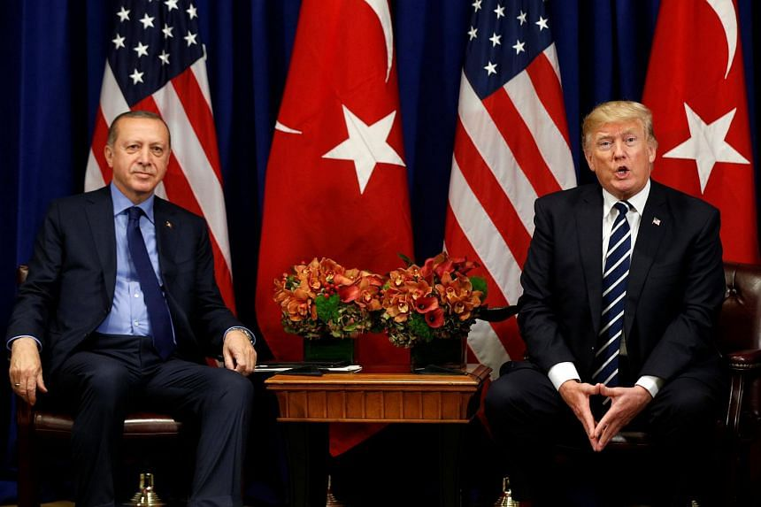 Turkish President Recep Tayyip Erdogan and US President Donald Trump discussed the crisis in Syria during a telephone conversation late on April 11, 2018.
