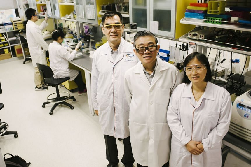 The Yong Loo Lin School of Medicine team behind the breakthrough study: (from left) Professor Wang De Yun from the Department of Otolaryngology, Associate Professor Vincent Chow from the Department of Microbiology and Immunology, and Assistant Profes